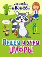 20268103_cover-pdf-kniga-anna-voronko-pishem-i-uchim-cifry-17204030