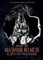 20933322_cover-elektronnaya-kniga-mervin-pik-malchik-vo-mgle-i-drugie-rasskazy