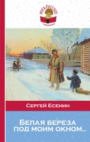 21717702_cover-elektronnaya-kniga-pages-biblio-book-art-18535957