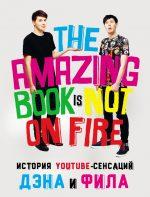 21969152_cover-pdf-kniga-den-hauell-istoriya-youtube-sensaciy-dena-i-fila-the-amazing-book-is-not-on-fire-4575329