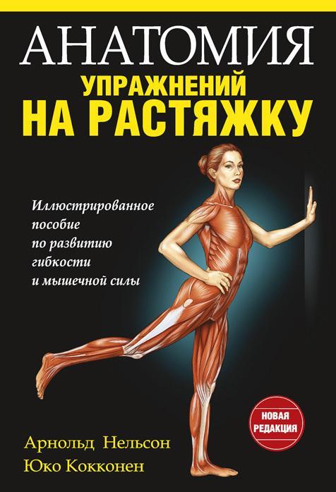 Анатомия упражнений на растяжку скачать бесплатно fb2