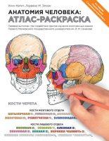 22275902_cover-pdf-kniga-m-elson-lourens-anatomiya-cheloveka-atlas-raskraska-19042008