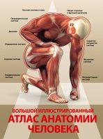 22676565_cover-pdf-kniga-anna-spektor-bolshoy-illustrirovannyy-atlas-anatomii-cheloveka-19274834