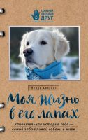 Моя жизнь в его лапах. Удивительная история Теда – самой заботливой собаки в мире