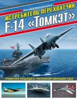 Истребитель-перехватчик F-14 «Томкэт». «Рабочая лошадка» палубной авиации США