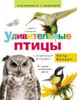Удивительные птицы