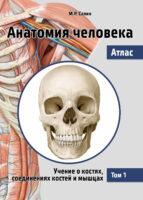 Анатомия человека. Атлас. Том 1. Учение о костях