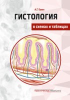 Гистология в схемах и таблицах
