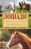 Лошади. Породы