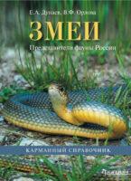 Змеи. Представители фауны России