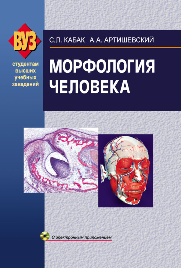 Морфология человека