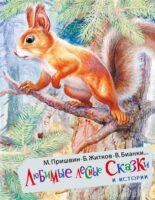 Любимые лесные сказки и истории